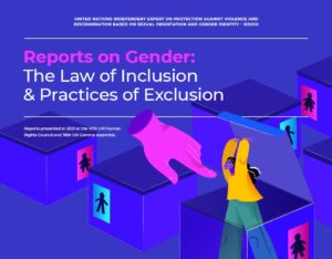 Reports on Gender: The Law of Inclusion and Practices of Exclusion